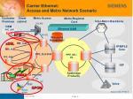 carrier ethernet access and metro network scenario