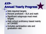ayp annual yearly progress