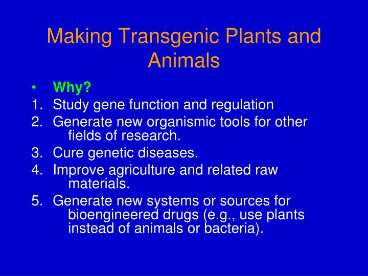 making transgenic plants and animals n.
