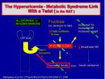 the hyperuricemia metabolic syndrome link with a twist in the rat