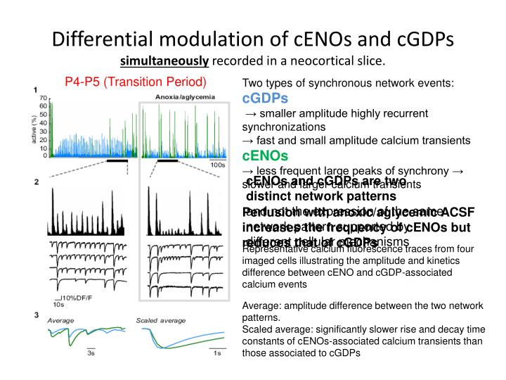 Differential modulation of cENOs and cGDPs