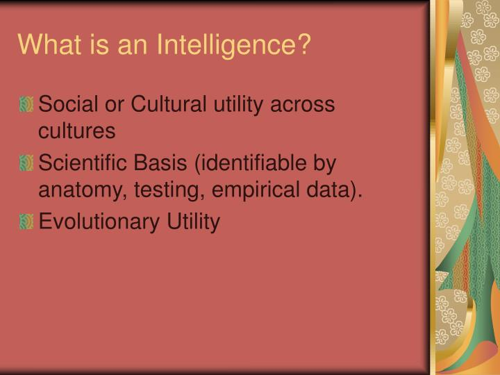 What is an intelligence