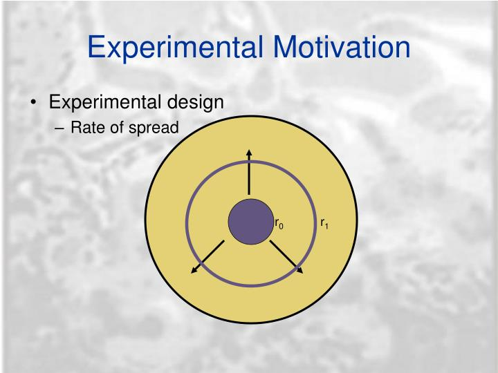 Experimental Motivation