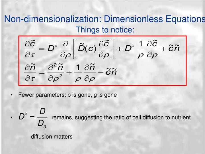 Non-dimensionalization: Dimensionless Equations