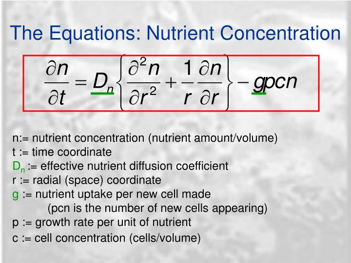 The Equations: Nutrient Concentration