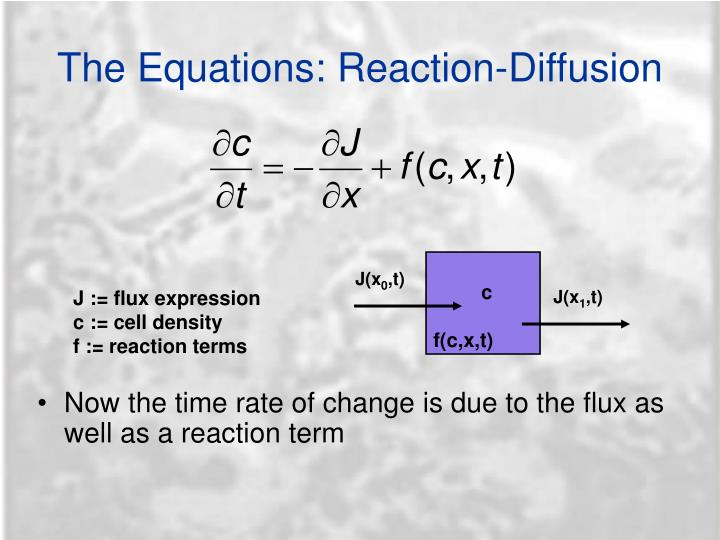 The Equations: Reaction-Diffusion
