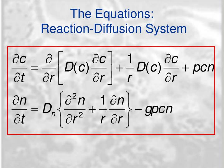 The Equations:
