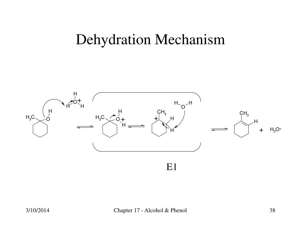 Dehydration Mechanism