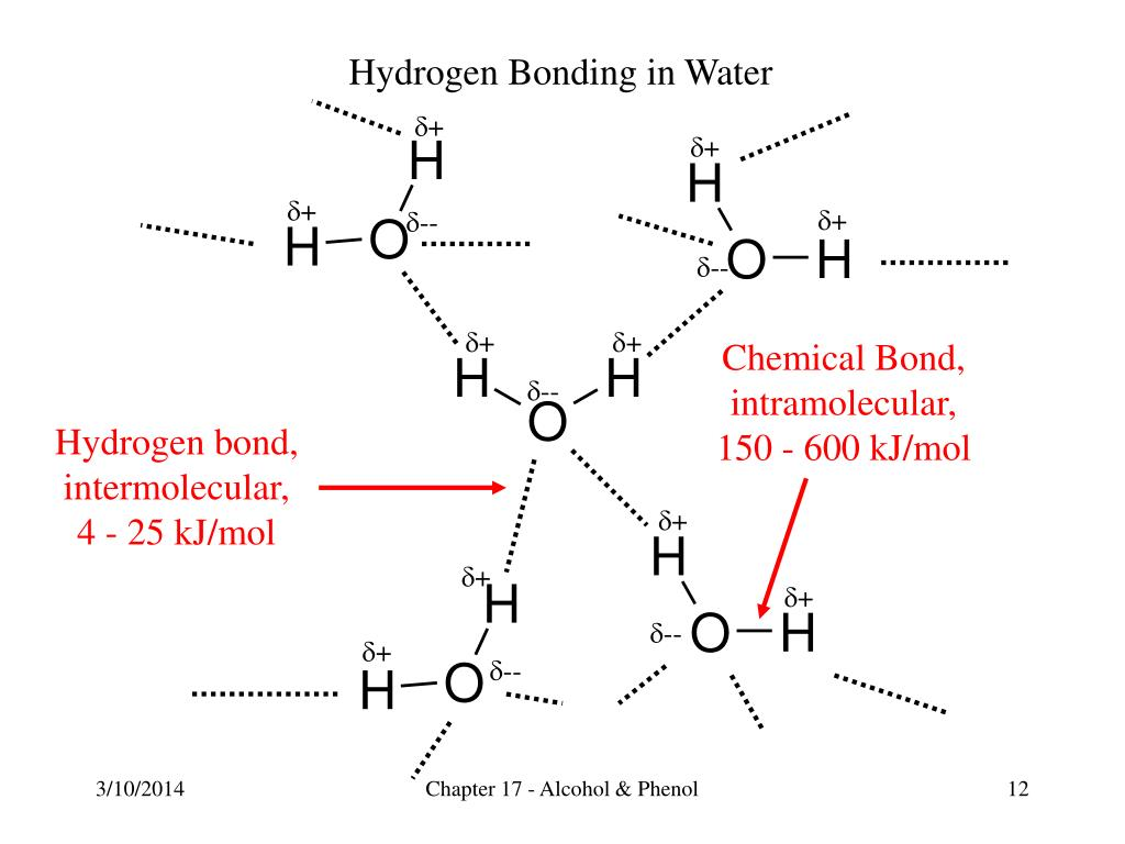 Chemical Bond,