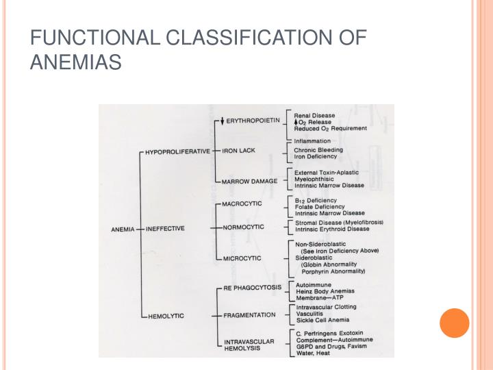 FUNCTIONAL CLASSIFICATION OF ANEMIAS