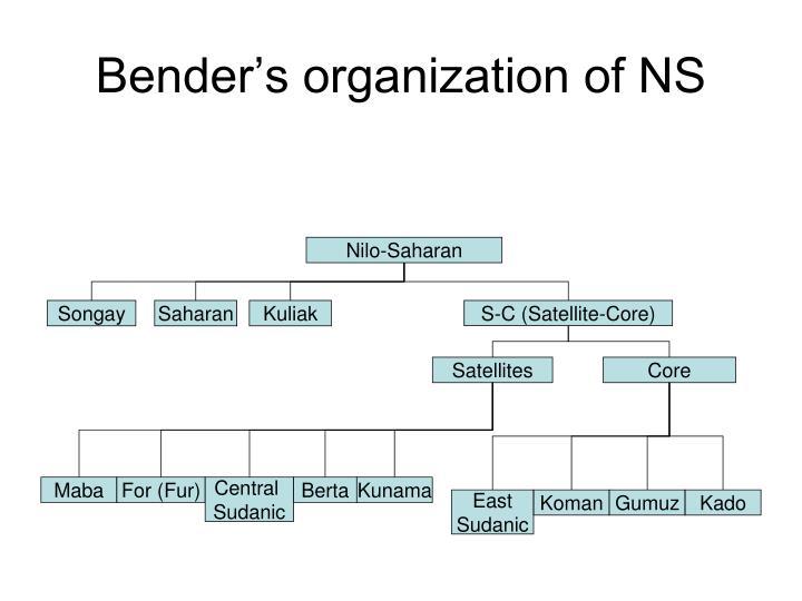 Bender's organization of NS