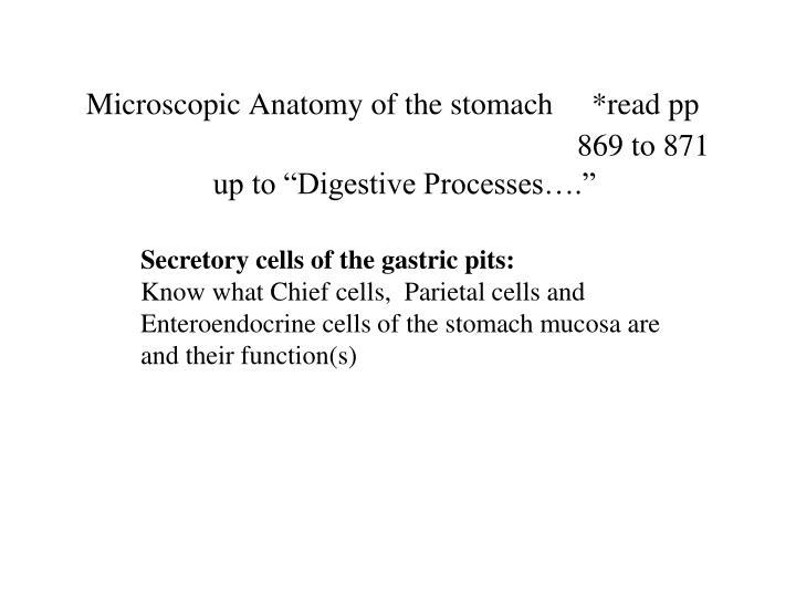 Ppt Digestive System Powerpoint Presentation Id1424736