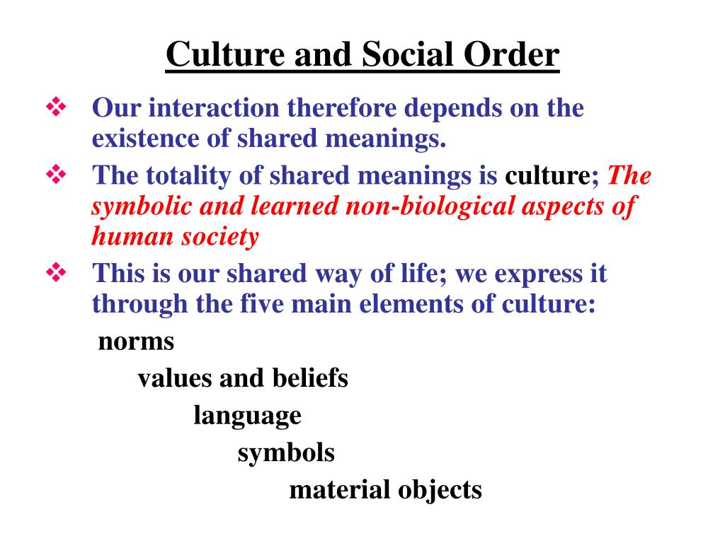 Culture and Social Order