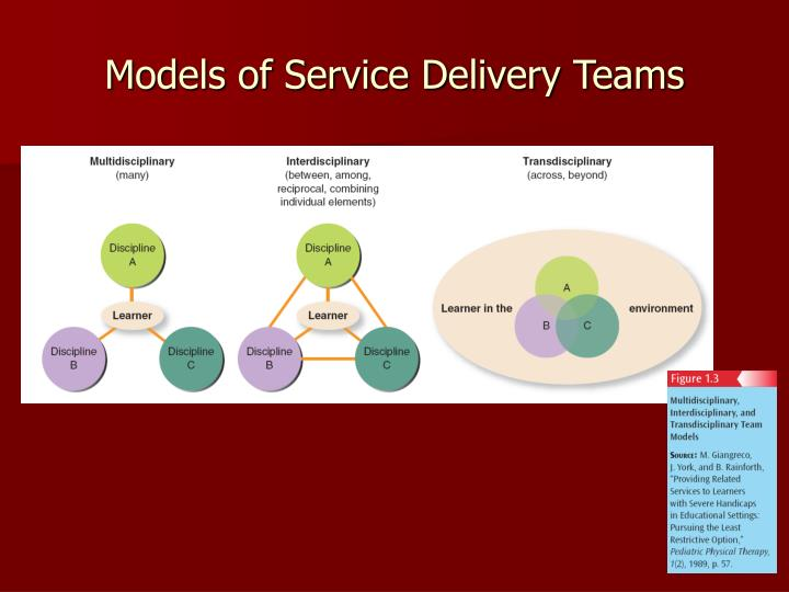 Models of Service Delivery Teams