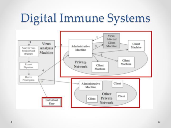 Digital Immune Systems