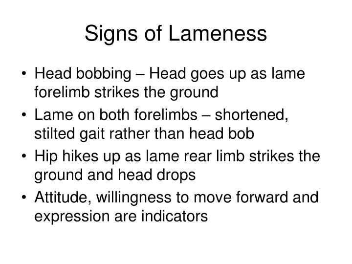 Signs of lameness