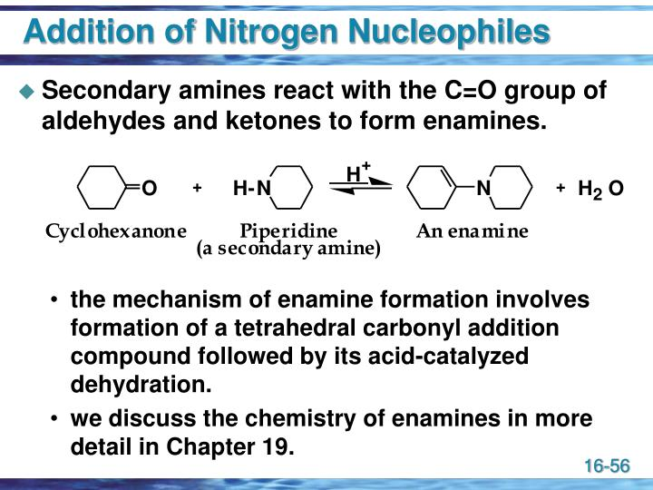 Addition of Nitrogen Nucleophiles