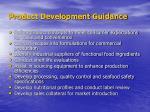 product development guidance