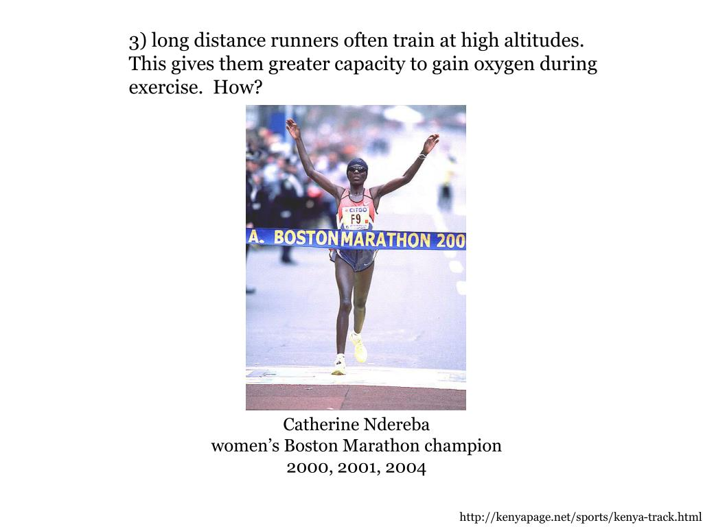 3) long distance runners often train at high altitudes.