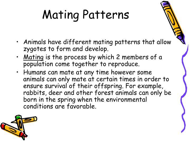 Mating Patterns