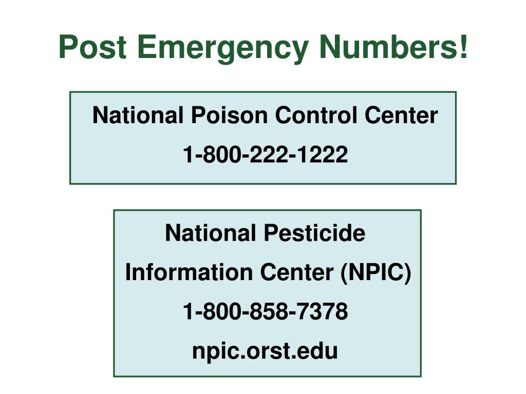 Post Emergency Numbers!