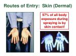 routes of entry skin dermal