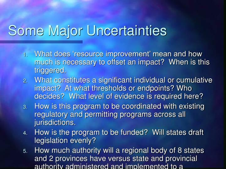 Some Major Uncertainties