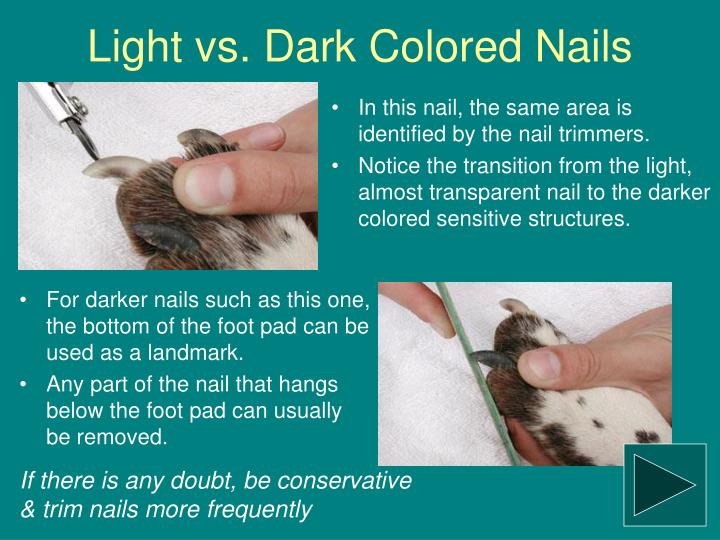 Light vs. Dark Colored Nails