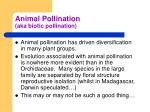 animal pollination aka biotic pollination1