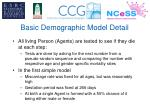 basic demographic model detail