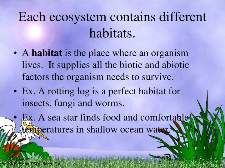 Each ecosystem contains different habitats.