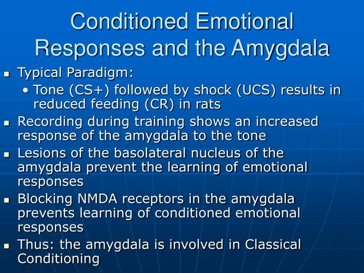Conditioned Emotional Responses and the Amygdala