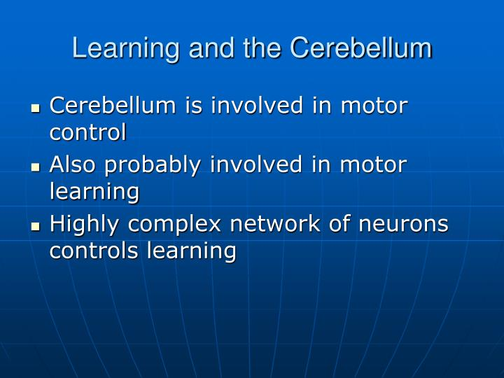 Learning and the Cerebellum