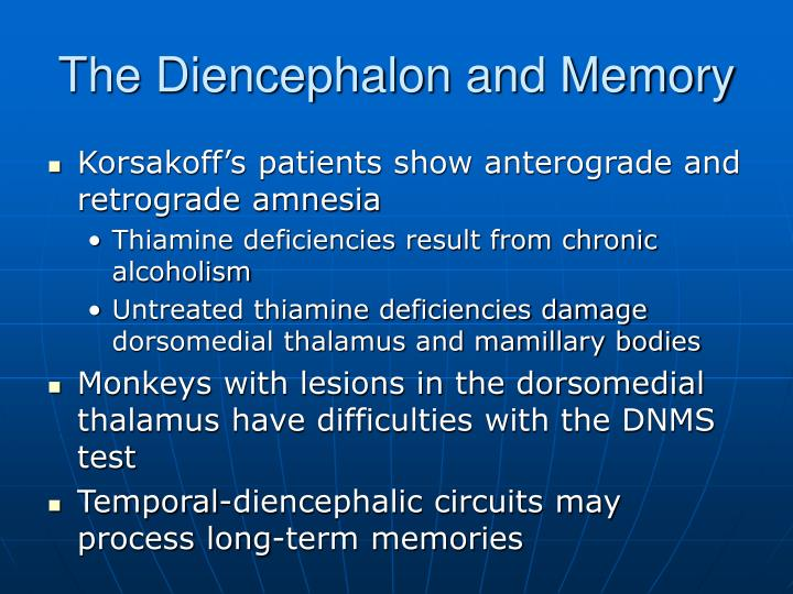 The Diencephalon and Memory