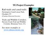 te project examples1