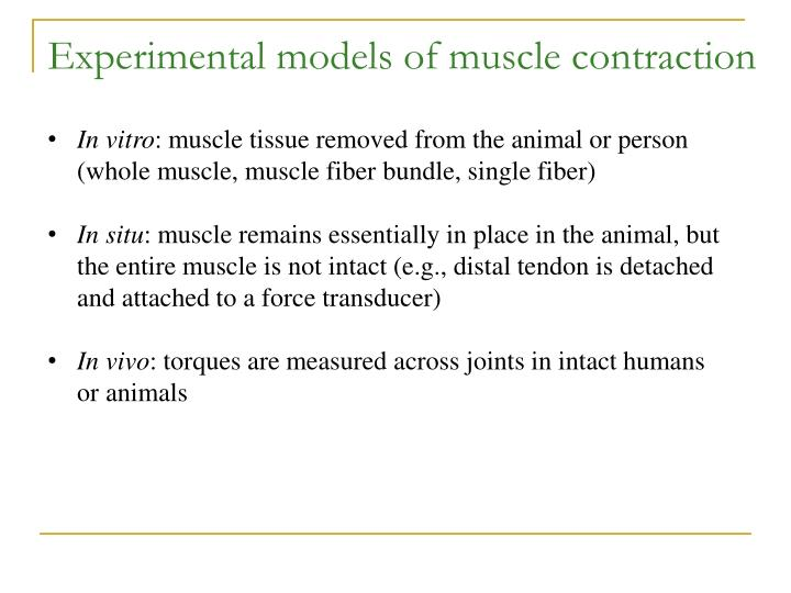 Experimental models of muscle contraction