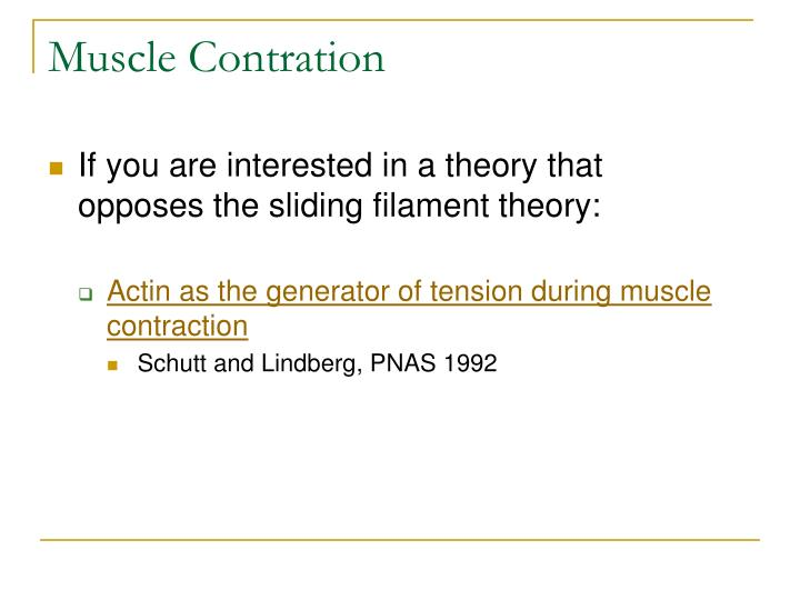 Muscle Contration
