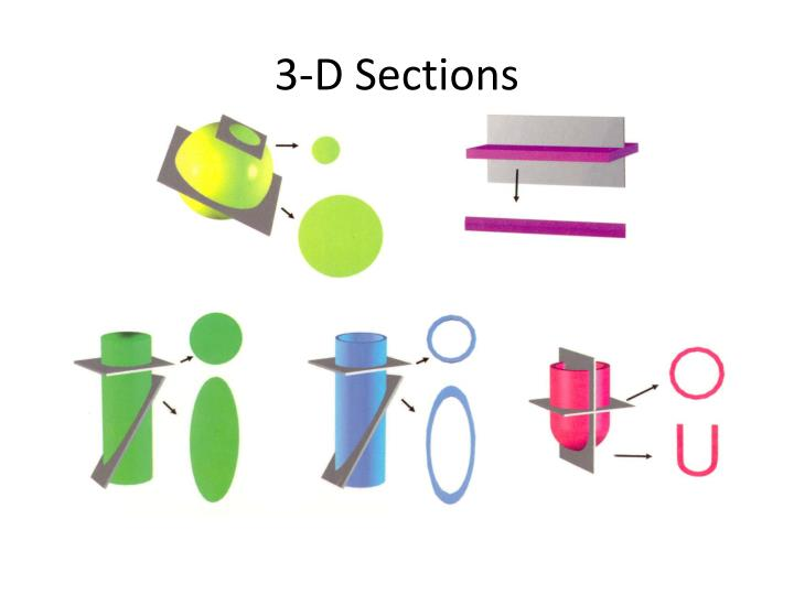 3 d sections n.