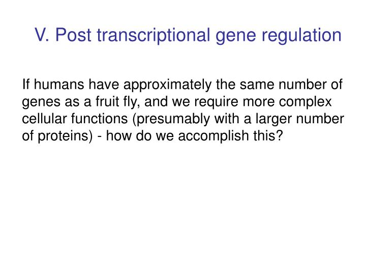 V. Post transcriptional gene regulation