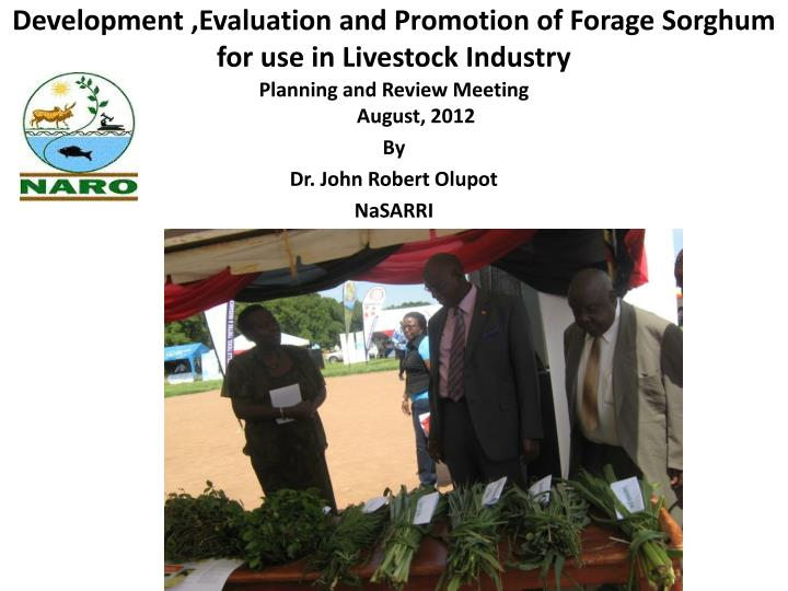 development evaluation and promotion of forage sorghum for use in livestock industry n.