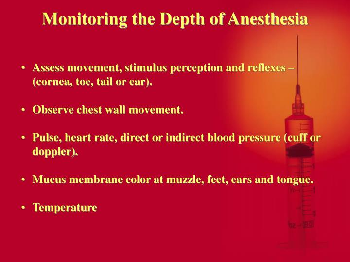 Monitoring the Depth of Anesthesia