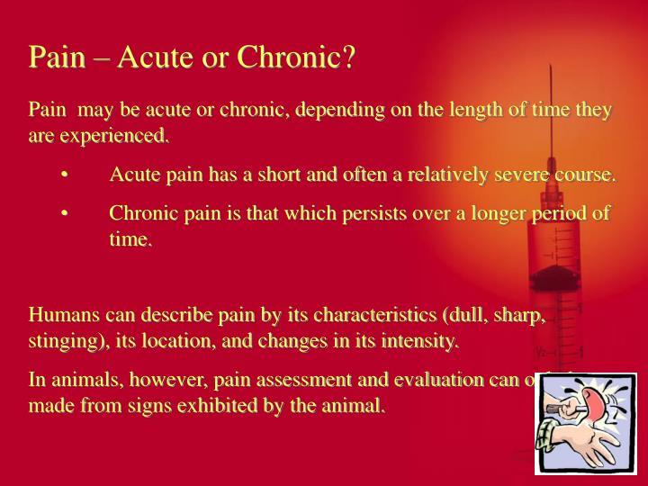 Pain – Acute or Chronic?