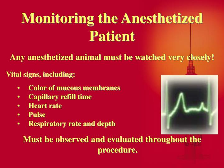 Monitoring the Anesthetized Patient