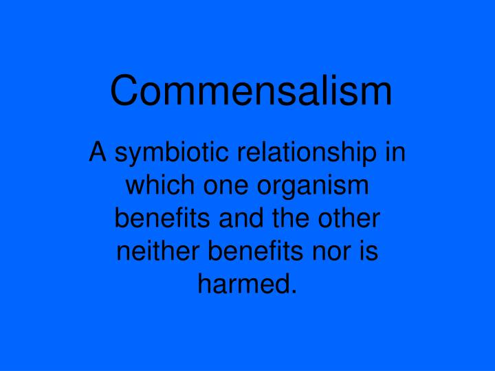 commensalism symbiosis and organism benefits Mutualism: commensalism: form of symbiotic relationship between two or more organisms where they all benefit type of relationship between two or more organisms but only one benefits and the other is unharmed.
