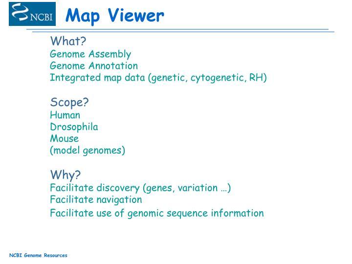 Map Viewer