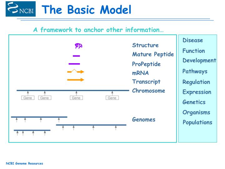 A framework to anchor other information…