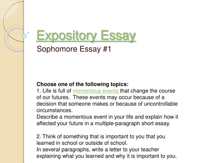 can essay be in point form