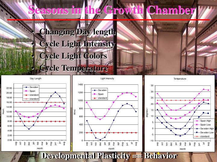 Seasons in the Growth Chamber