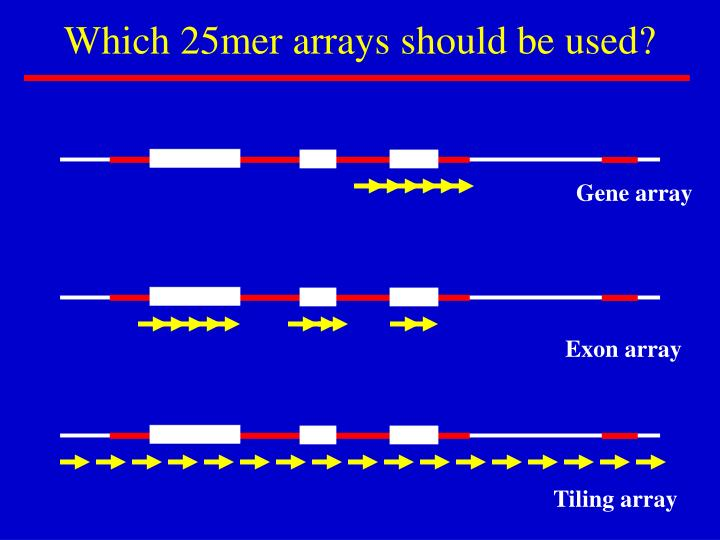Which 25mer arrays should be used?