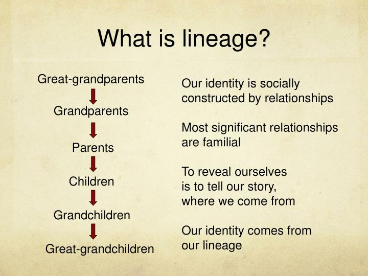 What is lineage?